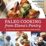 Paleo Cooking from Elanas Pantry