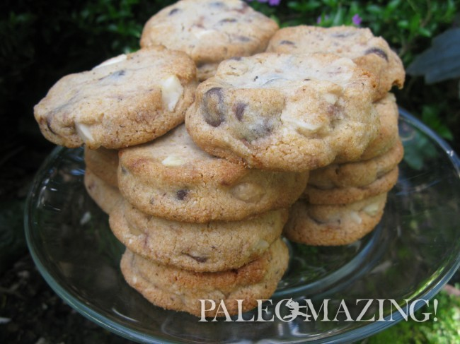 Tina's Amazing Paleo Chocolate Chip Cookies