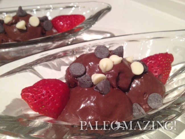 Dark Chocolate Paleo Ice Cream