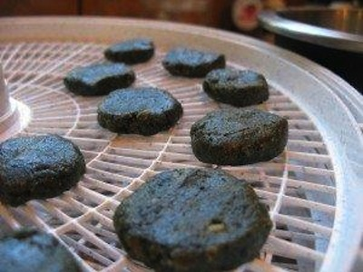 Paleo Gluten-Free, Dairy-Free Round Chocolate Spirulina Treats
