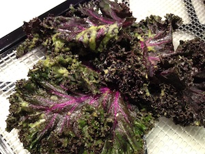 Red Kale Truffle Chips