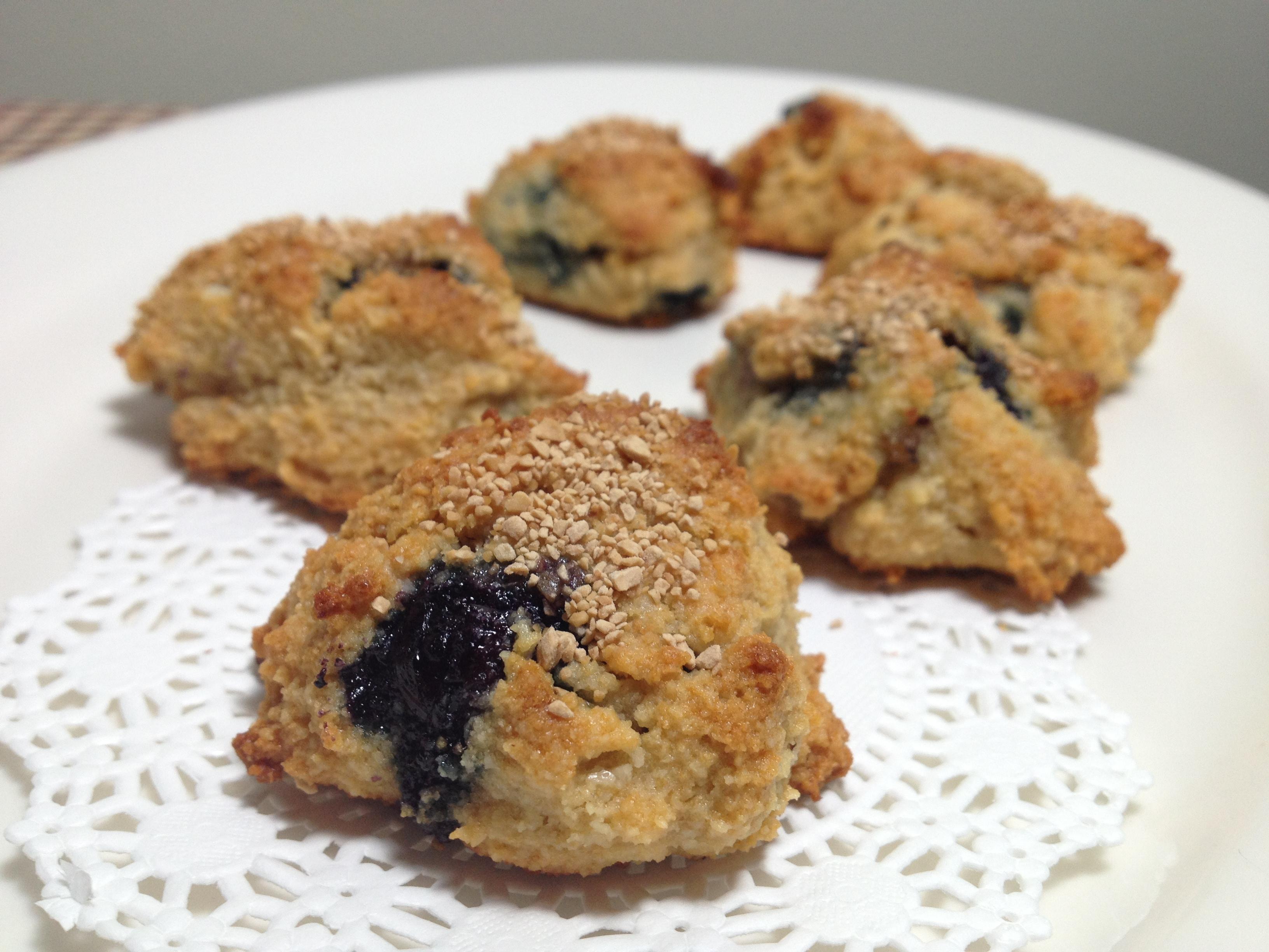 paleo blueberry mini-bites