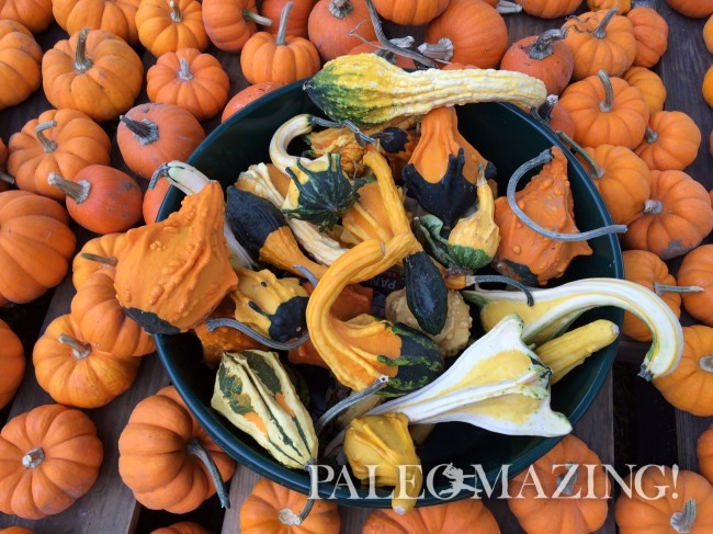 Traditions and Meaning of Halloween