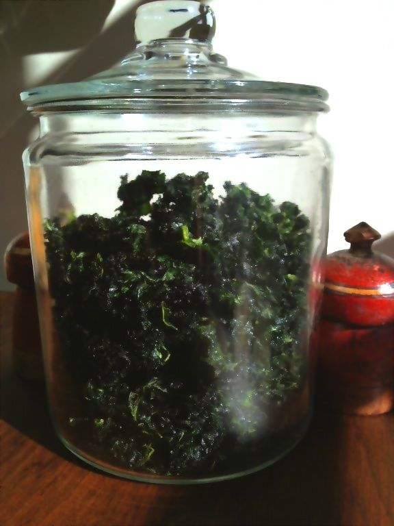 Paleo Spicy Kale Chips