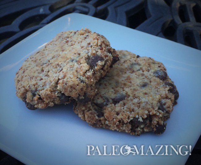 Chocolate Chip Cookies with Tigernut Flour