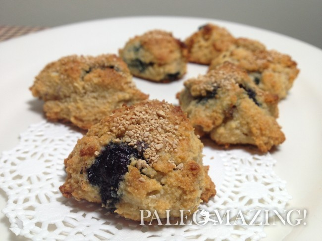 Paleo Blueberry Mini Scones