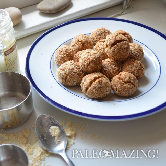 Paleo Snack Bites